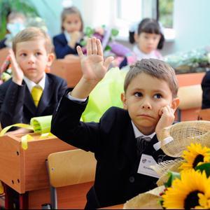 Школы Новоселицкого